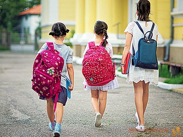 Vorzeitiger Schulabbruch: Initiativen zur Unterstützung der Schüler