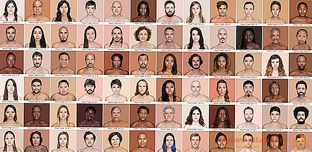 От фарфора до темного шоколада: «Пантон» из человеческой кожи, увиденный фотографом Анжеликой Дасс
