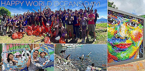 OceanDay ، اليوم العالمي للمحيطات: مبادرات في جميع أنحاء إيطاليا