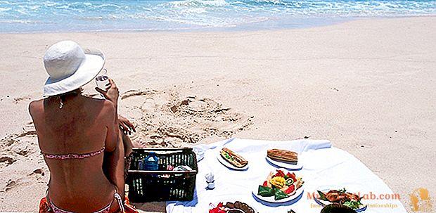 Picknick und Nahrungsmittelsicherheit. Die zu vermeidenden Lebensmittel, die am besten geeigneten und wie man sie lagert