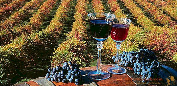 神話と真実の間のワイン