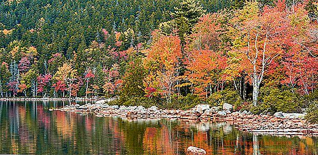 Viaje en el follaje. Los lugares más bonitos para perderse en los colores del otoño.