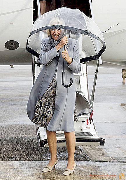 カミラは傘で口論しているマルタを訪問