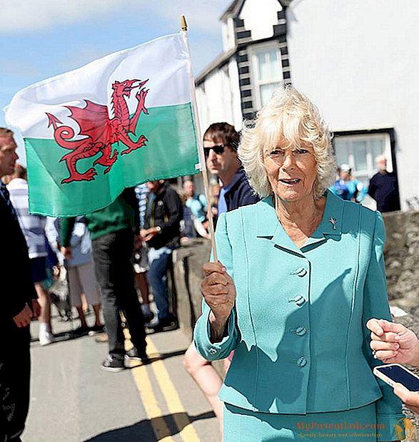Carlo dan Camilla di Wales, untuk mendukung tim nasional. Antara satu camilan dan yang lainnya